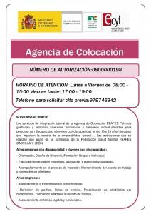 ANEXO IV_ Información en la web